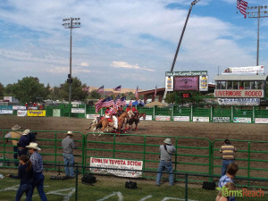FarmsReach, Livermore, rodeoIMG_6988