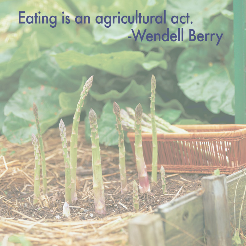 wendell berry essay the pleasures of eating Wendell berry:the pleasures of eating learn vocabulary, terms, and more with flashcards, games, and other study tools 11-5-2009 the art of the essays change online project behavior commonplace by wendell berry recommended by wade peerman 'eating is an agricultural act' is wendell berry's claim in his essay, 'the.